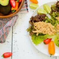 Super Simple Instant Pot Salsa Verde Chicken - Slow Cooker, too!